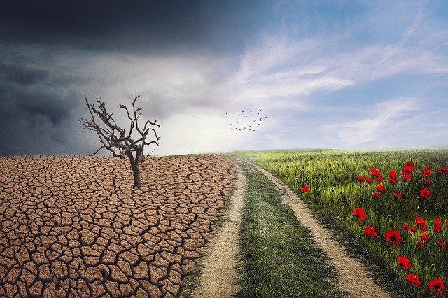 Buenas prácticas cambio climático